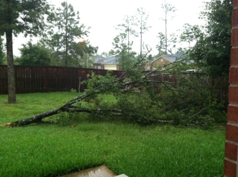 Semi-Wordless Wednesday: Stormy Weather
